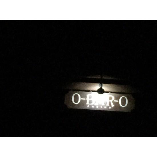 FL90 Solar Gooseneck Sign Light System (1-4 Fixtures)