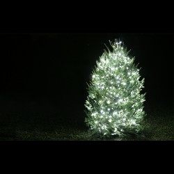 XP08 Solar Light Show Christmas / LED Light Commercial System