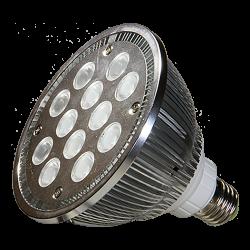 RL10 Replacement LED Light Bulb (24V 15W)